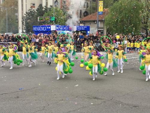 2019_Karneval_Rakovica-23