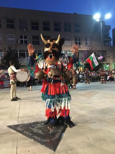 2019_Karneval_Sabac-31