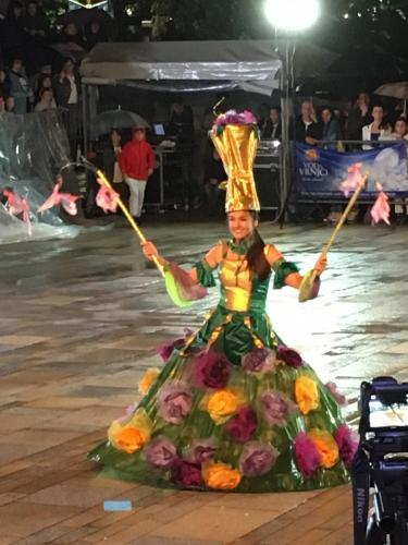 2019_Karneval_VrnjackaBanja-17