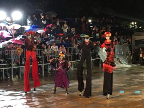 2019_Karneval_VrnjackaBanja-19