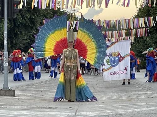 2021_Karneval_Bela-Crkva-11