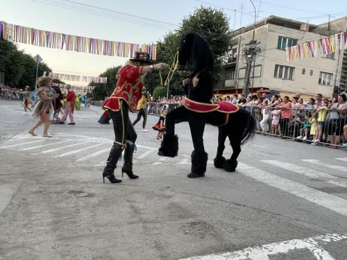 2021_Karneval_Bela-Crkva-12